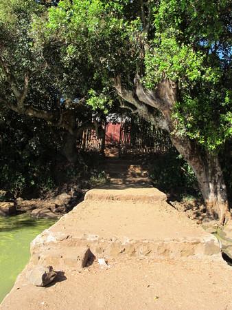 The garden on Bahr Dar lake in Ethiopia, Africa