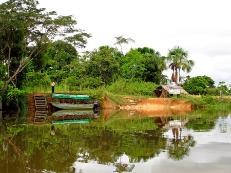 The Amazon river in Peru and Brazil Banque d'images