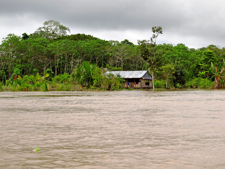 The Amazon river in Peru and Brazil