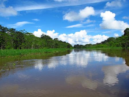 Le fleuve Amazone au Pérou et au Brésil