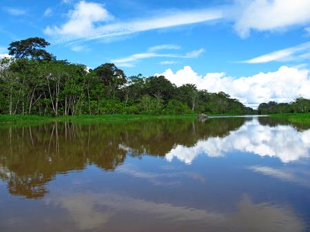 The Amazon river in Peru and Brazil Imagens
