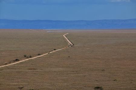 Road on savanna in Kenia and Tanzania, Africa