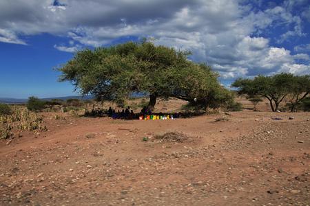 Safari in Kenia and Tanzania, Africa 版權商用圖片