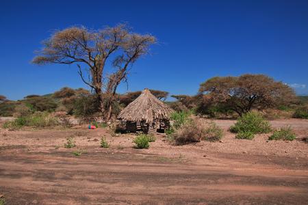 House in village of Bushmen, Africa