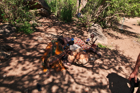 the life of the Bushmen, Africa
