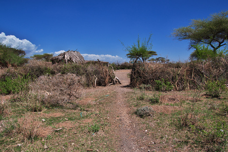 House in village of Bushmen, Africa 免版税图像