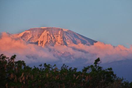 Mount kilimanjaro at sunset, Tanzania 版權商用圖片