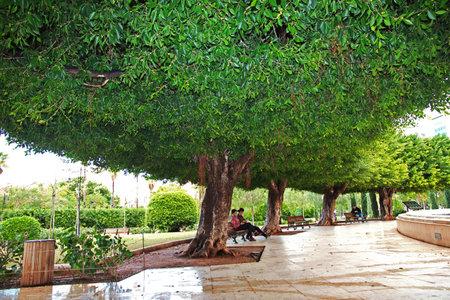 Beirut, Lebanon - 01 Jan 2018. The park in Beirut city, Lebanon Editorial