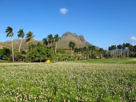 Mountains and valleys in Trinidad, Cuba Stok Fotoğraf