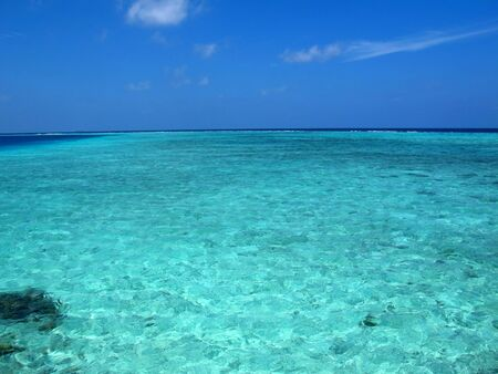 The beach on Maldives, Indian ocean