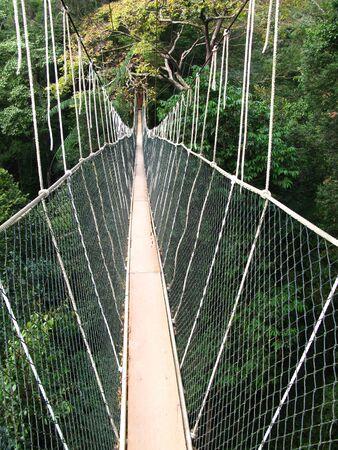 The bridge in Taman Negara national park, Malaysia