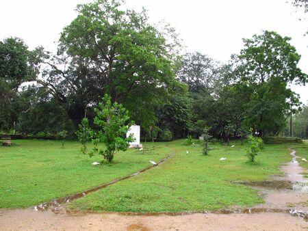 The park in Anuradhapura, Sri Lanka
