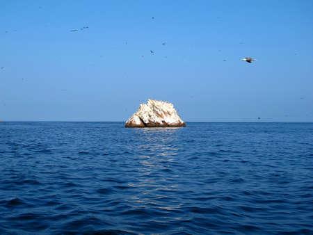 Rocks with animals in the Pacific ocean, Paracas, Peru Stock fotó