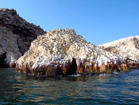 Rocks with animals in the Pacific ocean, Paracas, Peru