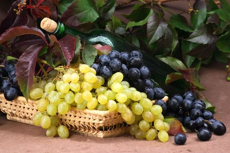 Wine composition Stock Photo - 2131267