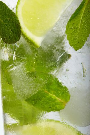 useful: leaf mint and cut citrus in ice