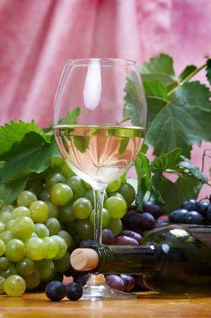 Wine composition Stock Photo - 5278791