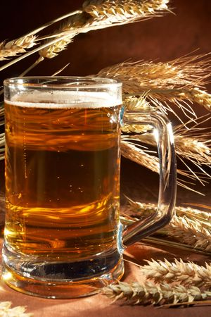 Glass of beer with grain Stock Photo - 5649257