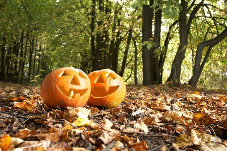 Creepy carved pumpkin face, with a smile, in park Stock Photo - 5649254
