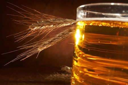 Glass of beer with grain Stock Photo - 5692124