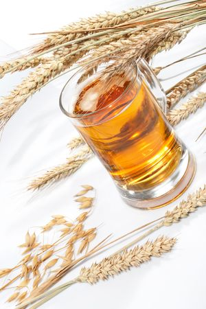 Glass of beer with grain Stock Photo - 5692126