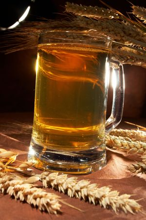 Glass of beer with grain Stock Photo - 5843474
