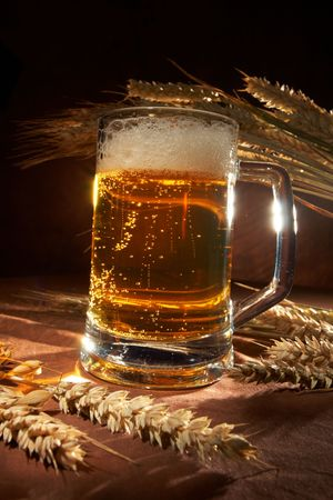 Glass of beer with grain Stock Photo - 5843547