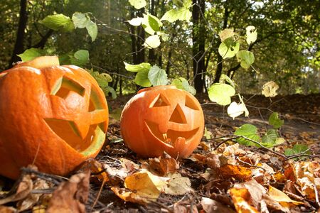 Creepy carved pumpkin face, with a smile, in park Stock Photo - 5843545