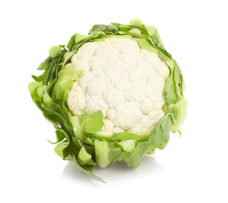 green cabbage: cabbage