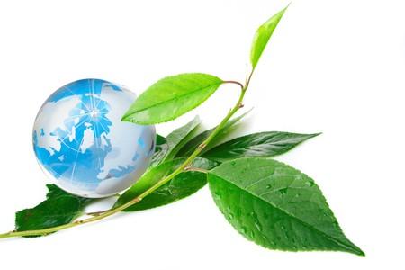 The globe concept eco Stock Photo - 7035061