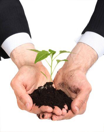 thrive: business men,  plant