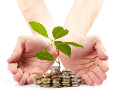 Coins sprout,  hands Stock Photo - 7416029