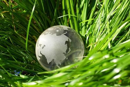 longitude: Globe in a grass, ecology