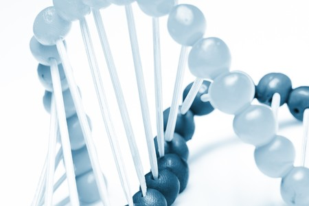 Molecule of DNA Stock Photo - 8221189