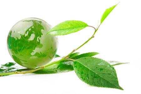 The globe concept eco Stock Photo - 8565513