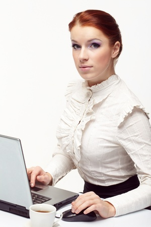 Business woman working on her laptop. Stock Photo - 8731606