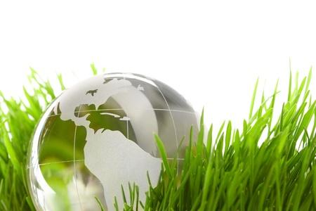 Globe in a grass photo
