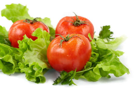 Tomatoes and lettuce  on the  white background photo