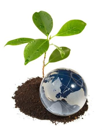 The globe concept eco photo