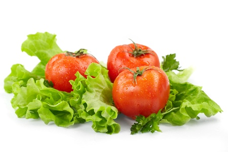 fresh produce:  Tomatoes and lettuce  on the  white background Stock Photo
