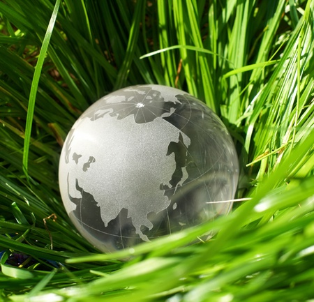 Globe in a grass, ecology photo