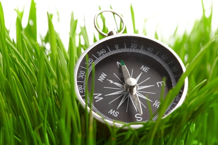 magnetic north: compass in green grass