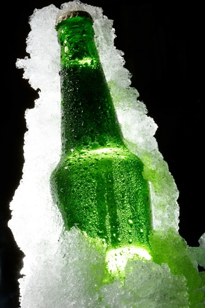 bottled beer: Close up view of the bottle in ice