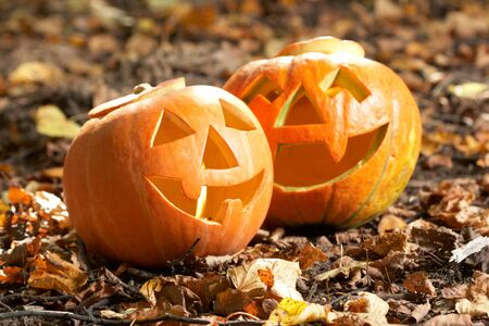 hallows': Creepy carved pumpkin face, with a smile, in park