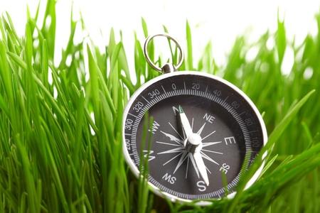 armonia: br�jula en pasto verde
