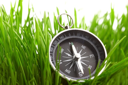 ir�ny: compass in green grass