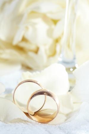 weddingrings: golden rings and  rose petals