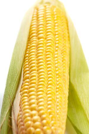 Fresh corn vegetable  photo