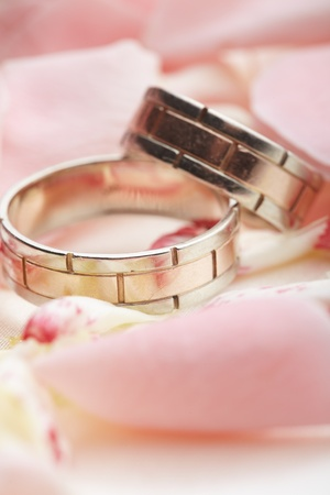 golden rings and rose petals  photo