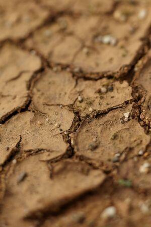 Dry soil texture photo